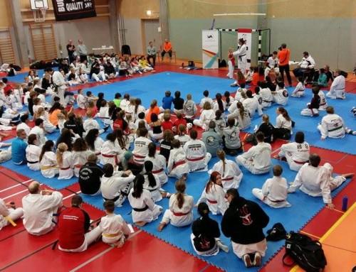 Sve što ste željeli znati o taekwondou, a niste se usudili pitati